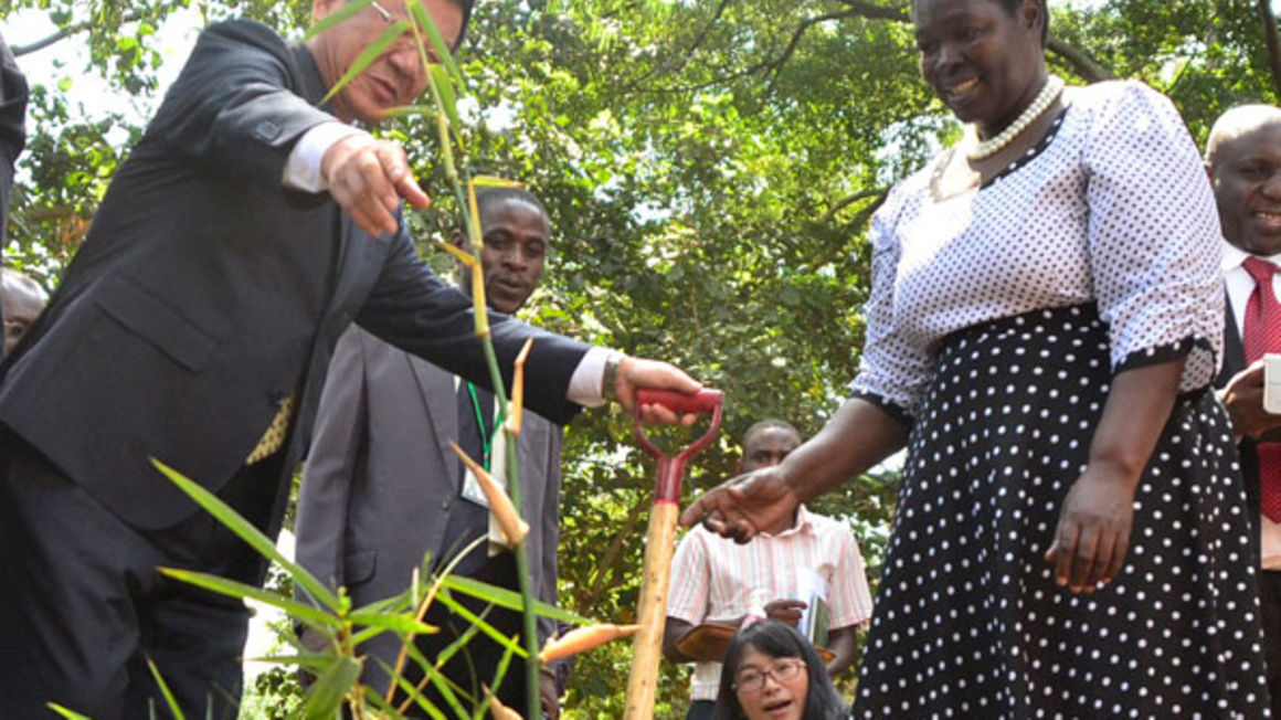 China sparking Green Revolution in Uganda with Bamboo.